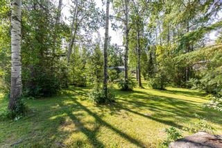 Photo 27: 46 274022 Twp 480: Rural Wetaskiwin County House for sale : MLS®# E4255958