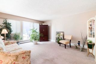 """Photo 8: 202 12096 222 Street in Maple Ridge: West Central Condo for sale in """"CANUCK PLAZA"""" : MLS®# R2591057"""