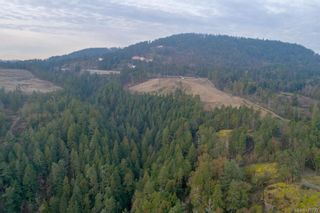 Photo 3: DL-130 Trans Canada Hwy in : ML Malahat Proper Land for sale (Malahat & Area)  : MLS®# 877733