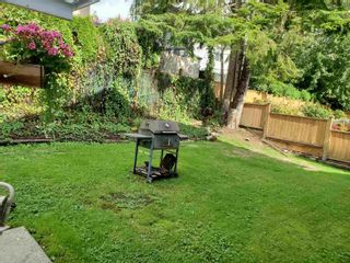 Photo 28: 2941 WALTON Avenue in Coquitlam: Canyon Springs House for sale : MLS®# R2621840