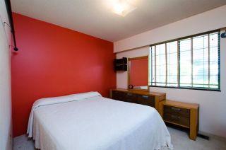 Photo 11: 5423 47 Avenue in Delta: Delta Manor House for sale (Ladner)  : MLS®# R2288023