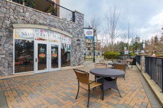 Photo 38: 1173 Deerview Pl in Langford: La Bear Mountain House for sale : MLS®# 843914