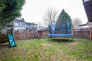 Photo 28: 20230 STANTON Avenue in Maple Ridge: Southwest Maple Ridge House for sale : MLS®# R2539510