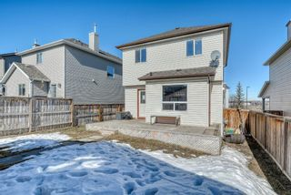 Photo 20: 448 Morningside Way SW: Airdrie Detached for sale : MLS®# A1084129