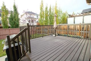Photo 20: 2185 SAGEWOOD Heights SW: Airdrie Detached for sale : MLS®# C4296129