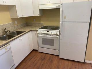 Photo 3: 1119 6224 17 Avenue SE in Calgary: Red Carpet Apartment for sale : MLS®# A1146122