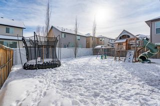 Photo 41: 209 Topaz Gate: Chestermere Residential for sale : MLS®# A1071394
