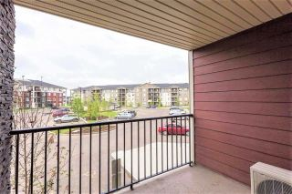 Photo 22: 217 18126 77 Street in Edmonton: Zone 28 Condo for sale : MLS®# E4241570