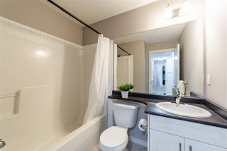 Photo 20: 24177 102 Avenue in Maple Ridge: Albion House for sale : MLS®# R2563094