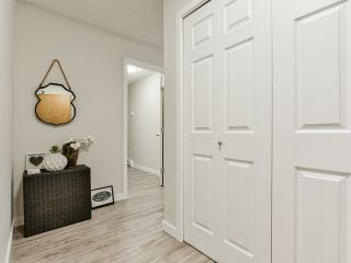 """Photo 3: 314 365 GINGER Drive in New Westminster: Fraserview NW Condo for sale in """"Fraser Mews"""" : MLS®# R2458139"""