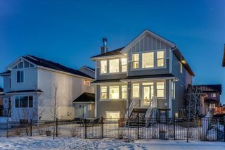 Photo 45: 283 Stonemere Green: Chestermere Detached for sale : MLS®# C4233917