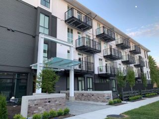 """Photo 1: 205 10168 149TH Street in Surrey: Guildford Condo for sale in """"Guildhouse II"""" (North Surrey)  : MLS®# R2398083"""