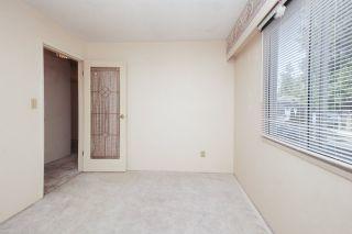 Photo 24: 21260 COOK Avenue in Maple Ridge: Southwest Maple Ridge House for sale : MLS®# R2530636