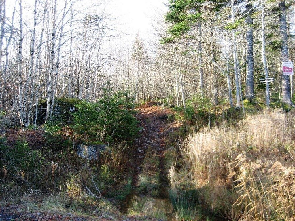 Main Photo: Lot Highway 107 in West Petpeswick: 35-Halifax County East Vacant Land for sale (Halifax-Dartmouth)  : MLS®# 202114068