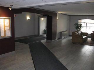 Photo 11: #402 13005 140 AV NW: Edmonton Condo for sale : MLS®# E4015768