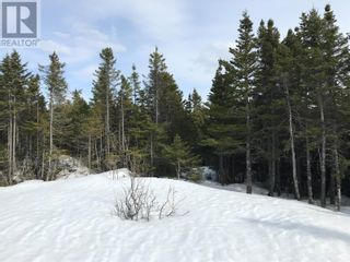 Photo 10: 0 New World Island Forestry Access Road in Summerford: Vacant Land for sale : MLS®# 1229207