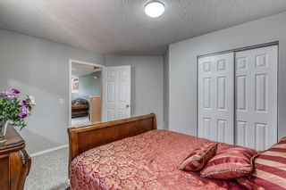 Photo 28: 686 Coventry Drive NE in Calgary: Coventry Hills Detached for sale : MLS®# A1116963