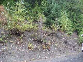 Photo 3: 13 Vickers Trail in Anglemont: Land Only for sale : MLS®# 10055804