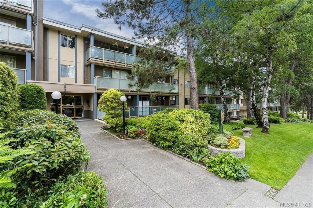 Main Photo: 402 1025 Inverness Rd in VICTORIA: SE Quadra Condo for sale (Saanich East)  : MLS®# 815890