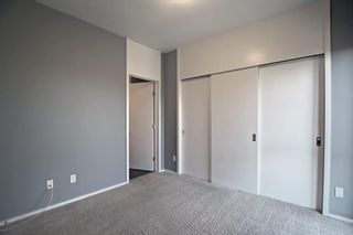 Photo 21: 207 414 Meredith Road NE in Calgary: Crescent Heights Apartment for sale : MLS®# A1150202