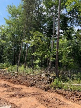 Photo 4: Lot 15 Fairway Avenue in Shubenacadie East: 105-East Hants/Colchester West Vacant Land for sale (Halifax-Dartmouth)  : MLS®# 202122115