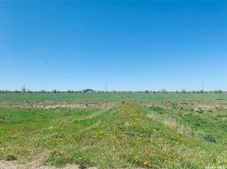Photo 4: 14 Oasis Lane in Dundurn: Lot/Land for sale (Dundurn Rm No. 314)  : MLS®# SK849902