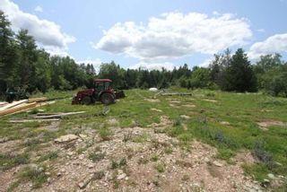 Photo 32: Lt 12 N Doyle Road in Kawartha Lakes: Rural Bexley House (1 1/2 Storey) for sale : MLS®# X5357700