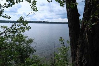 Photo 3: LOT 2 GUEST Road: Cluculz Lake Land for sale (PG Rural West (Zone 77))  : MLS®# R2449861