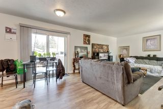 Photo 4: 1532 48 Street SE in Calgary: Forest Lawn Detached for sale : MLS®# A1138104