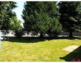 Photo 7: 23105 88TH AV in Langley: Fort Langley House  : MLS®# F2616420