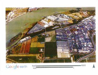 Photo 5: 7166 68 Street in Delta: East Delta Land for sale (Ladner)  : MLS®# R2105003