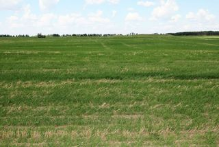 Photo 6: Twp Rd 592 Rg Rd 112: Rural St. Paul County Rural Land/Vacant Lot for sale : MLS®# E4263379