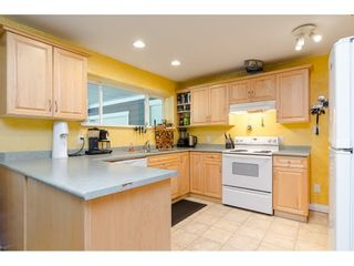 Photo 25: 11128 CALEDONIA Drive in Surrey: Bolivar Heights House for sale (North Surrey)  : MLS®# R2492410