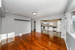 Photo 28: 3580 WILLIAM Street in Vancouver: Renfrew VE House for sale (Vancouver East)  : MLS®# R2594196