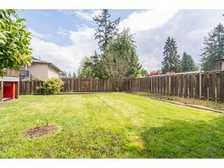 Photo 29: 22908 123RD Avenue in Maple Ridge: East Central House for sale : MLS®# R2571429