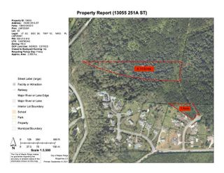 Main Photo: 13055 251A Street in Maple Ridge: Silver Valley Land for sale : MLS®# R2608280