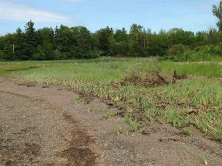 Photo 4: Lot 2 Shore Road in Lower Barneys River: 108-Rural Pictou County Vacant Land for sale (Northern Region)  : MLS®# 202008057