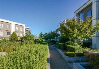 Photo 19: 362 15850 26 Avenue in Surrey: Grandview Surrey Condo for sale (South Surrey White Rock)  : MLS®# R2289828