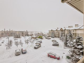 Photo 10: 407 5500 Somervale Court SW in Calgary: Somerset Apartment for sale : MLS®# A1067433