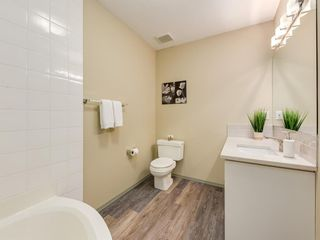 Photo 31: 533 50 Avenue SW in Calgary: Windsor Park Detached for sale : MLS®# A1063858
