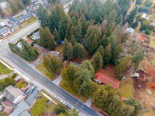 Photo 13: 12768 60 Avenue in Surrey: Panorama Ridge House for sale : MLS®# R2149274