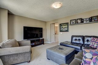 Photo 22: 17 Cranberry Lane SE in Calgary: Cranston Detached for sale : MLS®# A1142868