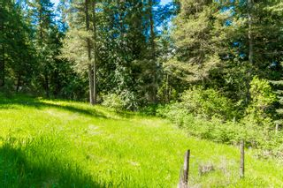 Photo 23: 3977 Myers Frontage Road: Tappen House for sale (Shuswap)  : MLS®# 10134417
