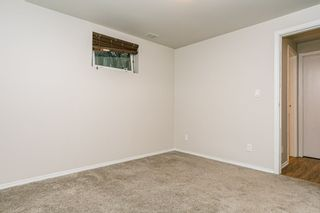 Photo 42: 11724 UNIVERSITY Avenue in Edmonton: Zone 15 House for sale : MLS®# E4221727