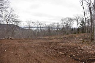 Photo 6: Lot Lighthouse Road in Bay View: 401-Digby County Vacant Land for sale (Annapolis Valley)  : MLS®# 202106334
