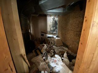 Photo 20: 10599 N DEROCHE Road in Mission: Dewdney Deroche House for sale : MLS®# R2540279