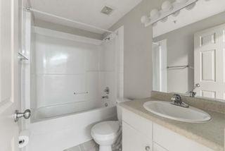 Photo 24: 102 11408 108 Avenue in Edmonton: Zone 08 Condo for sale : MLS®# E4253242