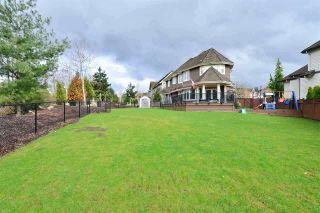 "Photo 18: 3148 162 Street in Surrey: Grandview Surrey House for sale in ""Morgan Acres"" (South Surrey White Rock)  : MLS®# R2204831"