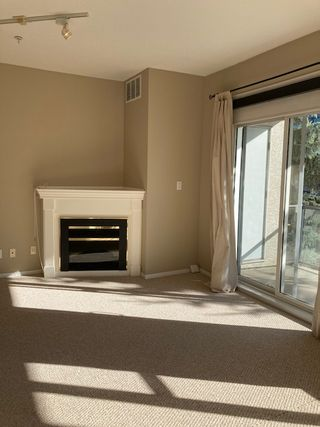Photo 11: 424, 10023 110 Street in Edmonton: Condo for rent