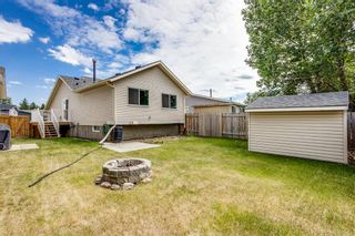 Photo 26: 11 Emberdale Way SE: Airdrie Detached for sale : MLS®# A1124079